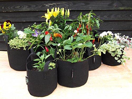 5 x Hogger vaso - alta qualità - aerazione vaso per piante in vaso - 38 litri