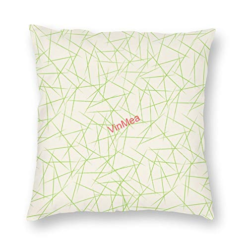 VinMea Decorative Pillow Covers Abstract Modern Design Cushion Covers for Sofa Bedroom Home Office Decor 18x18 Inch