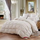 羽毛布団 暖かくて厚いシングル二重航空学生白い冬のキルト 寝具掛け布団 (サイズ さいず : 200*230センチメートル)