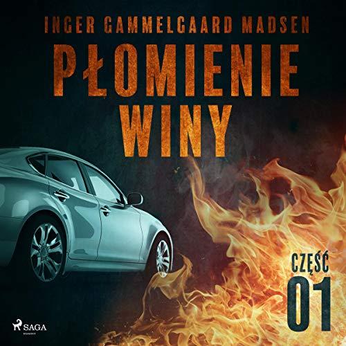 Płomienie winy - część 1 audiobook cover art