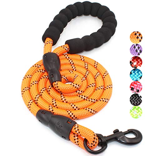BAAPET 4/5/6 FT Strong Dog Leash with Comfortable Padded Handle and Highly Reflective Threads for Small Medium and Large Dogs (5FT-1/2'', Orange)