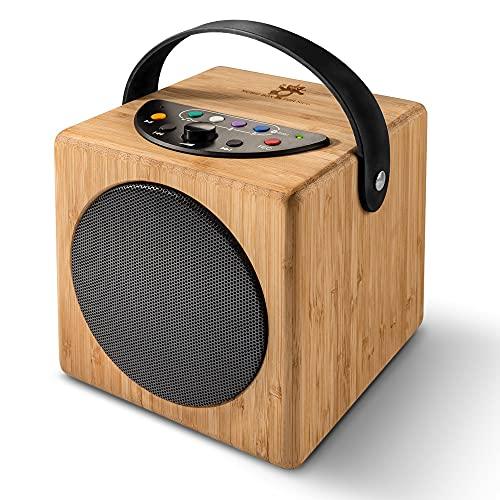 KidzAudio Badoo - der Mobile Kinder-Lautsprecher und MP3-Player aus Holz mit eingebautem Mikrofon und Bluetooth (ab 3 Jahre)