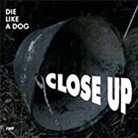 Die Like a Dog-Close Up