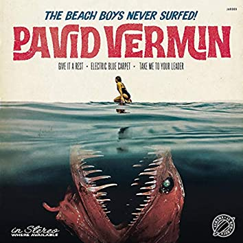 The Beach Boys Never Surfed