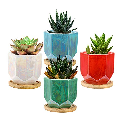 Lewondr 4 Pezzi Vasi da Fiori per Succulente, Mini Vaso da Fiori in Ceramica con Vassoio di bambù, Vasi Decorazioni da Ufficio Casa Camera per Pianta Piccola Succulenta Erba Cactus, Multi Colore