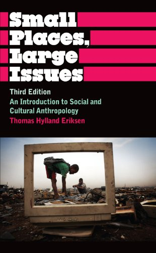Small Places, Large Issues: An Introduction to Social and Cultural Anthropology, Third Edition (Anthropology, Culture an