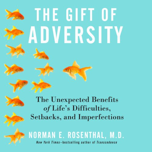 The Gift of Adversity audiobook cover art