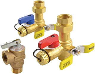 Rheem RTG20220AB Brass Service Vales for Tankless Water Heaters