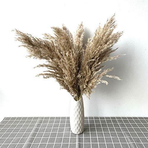 HNLY Real Dried Flowers, Pampas Grasses, Large Natural Plant Decorations, Wedding Flower Bouquets With Plastic Vases