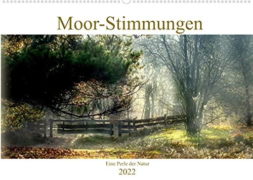 Moor-Stimmungen (Wandkalender 2022 DIN...