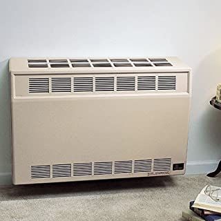 Empire Comfort Systems Direct-Vent Wall Furnace Size: 35,000 Btu, Fuel: Natural Gas
