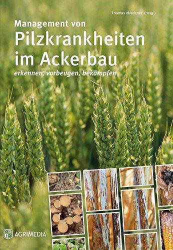 Management von Pilzkrankheiten im Ackerbau: Erkennen, Vorbeugen, Bekämpfen