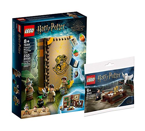 Collectix Lego Harry Potter, set per lezioni di Harry Potter, Harry Potter Hogwarts, 76384 + Harry Potter e Hedwig, confezione di gufi 30420 (sacchetto di plastica)