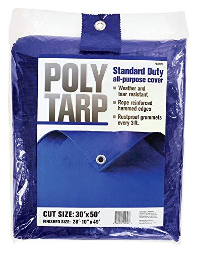 Projex 30 ft. W x 50 ft. L Light Duty Polyethylene Tarp Blue