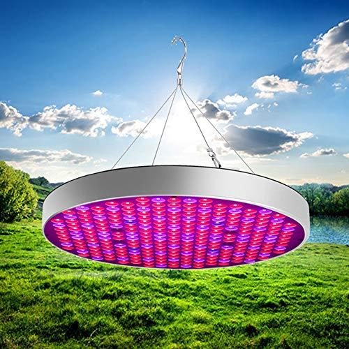 LAMP-XUE 50W LED groei, plant groeien lichten voor indoor kamerplanten Full Spectrum waxende lamp voor hydrocultuur kassen, groeien, tent, plant, fabriek,