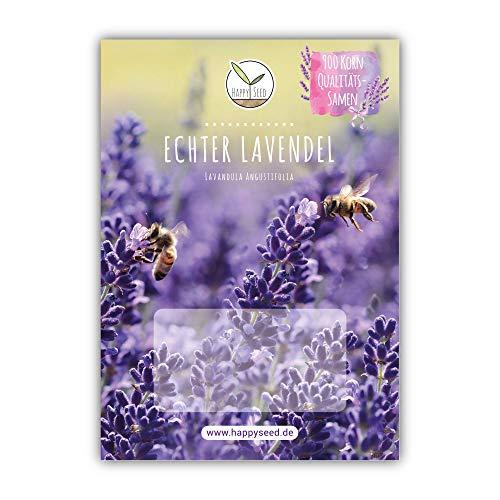 900x Graines de lavande à haut taux de germination - Plante médicinale polyvalente & idéale pour les abeilles et les papillons (livre électronique GRATUIT inclus)