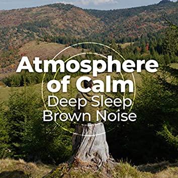 Atmosphere of Calm