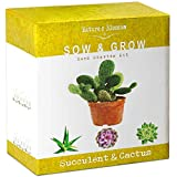 Nature's Blossom Succulent & Cactus Growing Kit. A Complete Set to Grow Succulents & Cacti Plants from Seed....