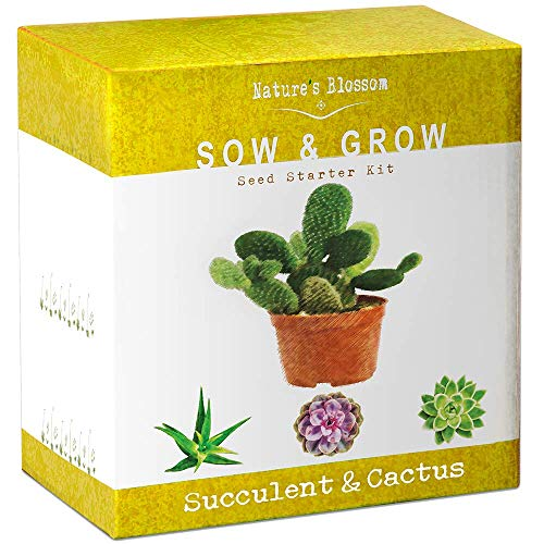 Nature's Blossom Succulent & Cactus Growing Kit. A Complete Set to Grow Succulents & Cacti Plants from Seed. Seeds, Pots, Soil, Labels & Gardening Guide Included. Indoor Garden Gift for Men & Women