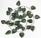 30 Best RayLineDo Green Leaves