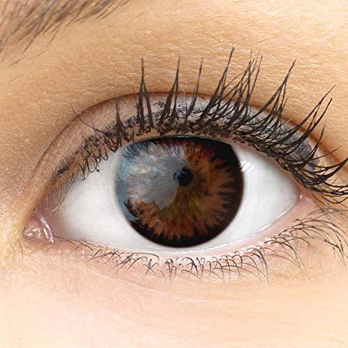 """Sehr stark deckende und natürliche braune Kontaktlinsen SILIKON COMFORT NEUHEIT farbig """"Siena Choco"""" braun + Behälter von GLAMLENS - 1 Paar (2 Stück) - DIA 14.50 - ohne Stärke 0.00 Dioptrien"""