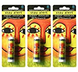 Earth Solutions Aromatherapy Inhalers   Stay Alert (3 Pack)   Personal Essential Oil Diffuser   A Anti Fatigue Essential Oil Blend with Positive Affirmation   Best Essential Oil Sets