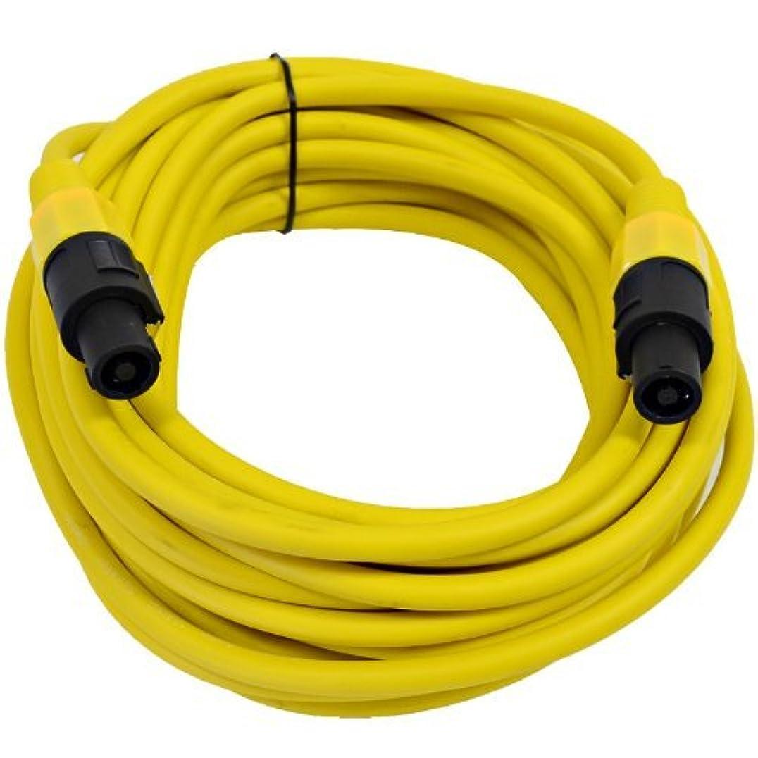 曖昧な名誉脚Seismic Audio - TW12S25Yellow - 12 Gauge 25 Foot Yellow Speakon to Speakon Professional Speaker Cable - 12AWG 2 Conductor Speaker Cable [並行輸入品]