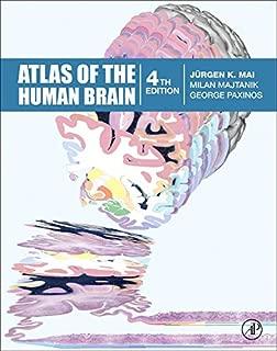 milan brain