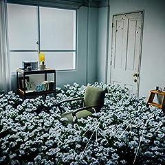 泣き虫「ネモネア。」の歌詞を収録したCDジャケット画像