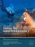 Under the Mediterranean I: Studies in Maritime Archaeology (Honor Frost Foundation Research Publication)