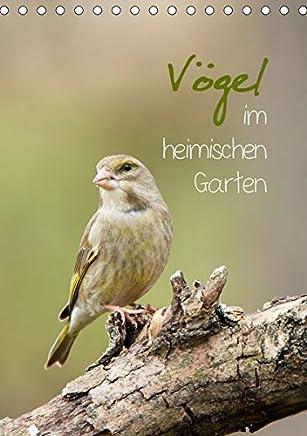 Vögel im heimischen Garten (Tischkalender 2019 DIN A5 hoch): Vogelbilder aus dem heimischen Garten (Planer, 14 Seiten ) (CALVENDO Tiere)