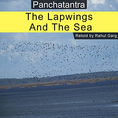 The Lapwings and the Sea audiobook cover art