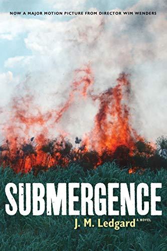 Image of Submergence