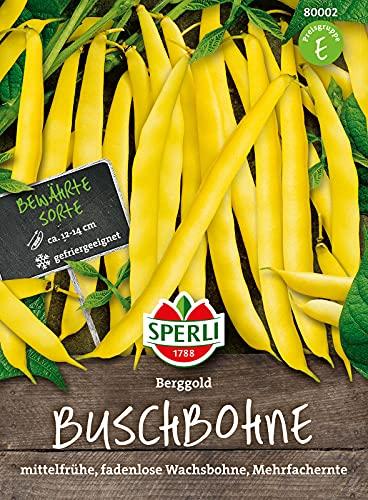 80002 Sperli Premium Buschbohnen Samen Berggold | Ertragreich | Fadenlos | Buschbohnen Samen ohne Fäden | Ackerbohnen Saatgut