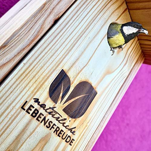 Natürliche Lebensfreude - Meisen Nistkasten nach NABU aus Deutschland inkl. 2 Alu Nägel -100{aaf1ad5dcf1e2e165aef91bad93b6969401b872f2db37fa9818b083e2ce0bd24} Handarbeit - Lärche Massivholz aus dem Schwarzwald - Einflugloch 28mm - Vogelhaus