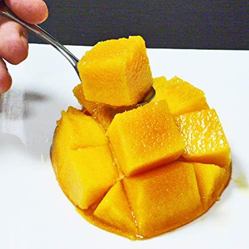 高級アップルマンゴー約1kg(2~3玉前後)台湾直輸入