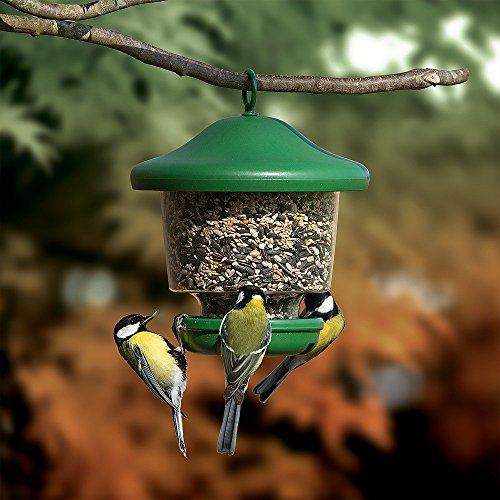 Hanging Lantern Garden Bird Feeder - My Favourites - Easy fill, rainproof roof, green
