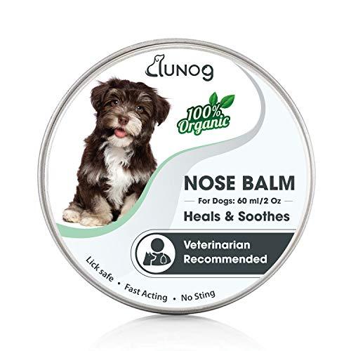 DUNOG Bálsamo para la Nariz del Perro - Chupete para Perros - Alivia y repara la Nariz Seca y crujiente de su Perro con Ingredientes 100% Naturales - Seguro y Efectivo - 60 ml