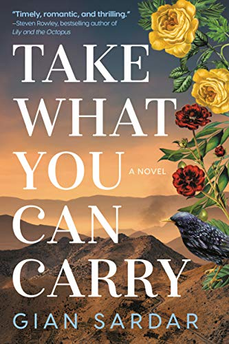 Take What You Can Carry: A Novel