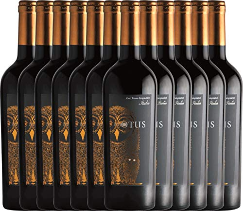 VINELLO 12er Weinpaket Rotwein - Asio Otus Vino Varietale d'Italia - Mondo del Vino mit Weinausgießer | lieblicher Rotwein | italienische Rotwein-Cuvée | 12 x 0,75 Liter