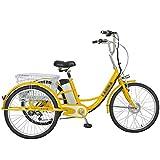 Elektrisches Dreirad für Erwachsene 3-Rad-Fahrrad Kleiner Alter Roller 24-Zoll-Lithiumbatterie 48 V, um Eltern Bewegung, Einkaufen, Gehen 48V12AH Motor 250W Material aus Kohlenstoffstahl