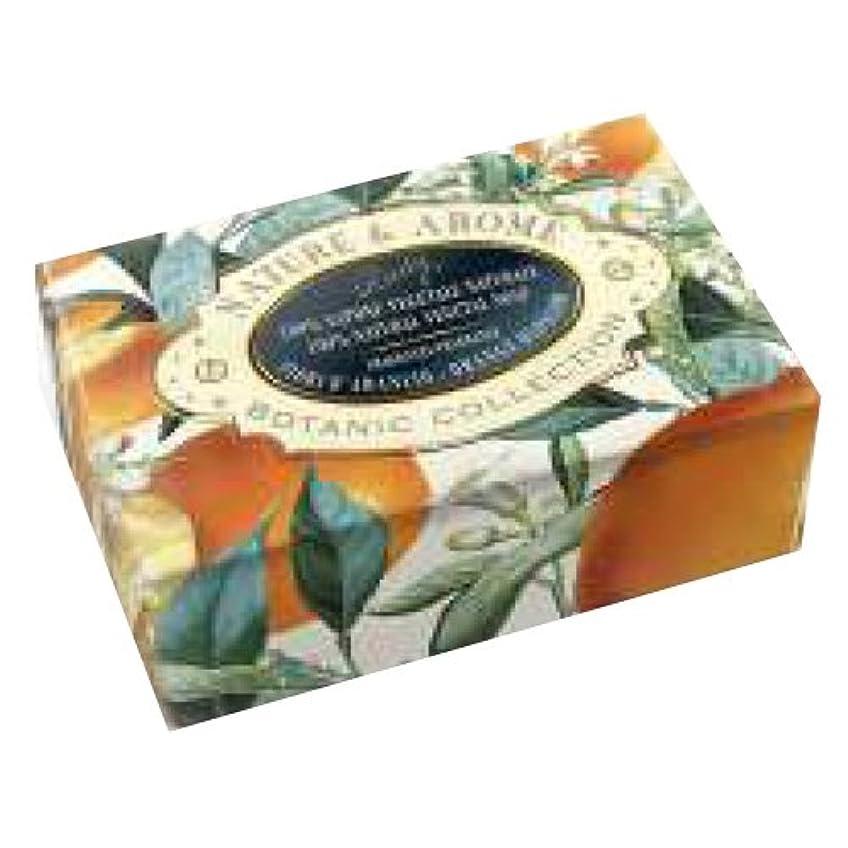 圧縮荒らす財政RUDY Nature&Arome SERIES ルディ ナチュール&アロマ Soap ソープ オレンジブロッサム