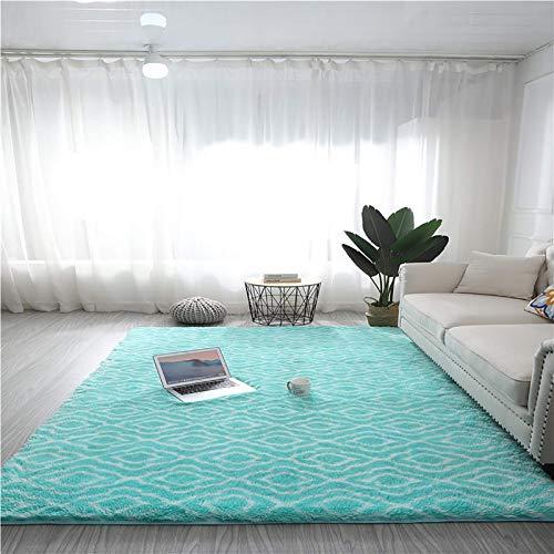 Modern luxuriöser Indoor Plüsch Flaumy Area Teppich, extra weiche und bequeme Samt Shag Teppichboden, geometrische marokkanische Teppiche für Schlafzimmer Wohnzimmer Carpet-Q 24x63inch (60x160cm), f,