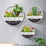 Paquete de 3 macetas colgantes de pared – moderna cesta de pared redonda vertical maceta para decoración interior y exterior jarrón soporte para plantas de aire suculentas, cactus, hierbas(blanco)
