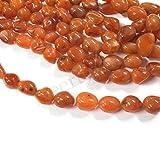 Neerupam Collection el color natural de naranja indio llanura de piedras preciosas cornelian granos de la forma de tambor 1 línea floja hebra de 12-15 pulgadas