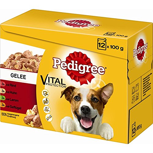 Pedigree Adult in Gelee im Multipack 4X 12x100g Hundefutter