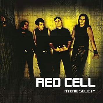 Hybrid Society