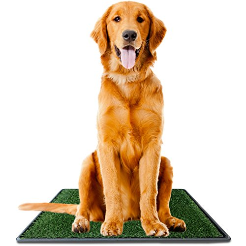 Ideas In Life Dog Potty Grass Pee Pad – Large 20