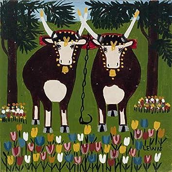 Even Oxen