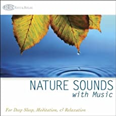Healing Music of the Forest